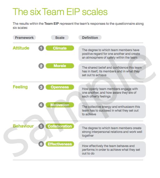 Team EIP Team report